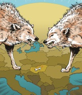 Scrapping over the scraps – a dog-eat-dog world in CEE IB