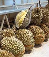 Belt and Road uses a durian in hope of better PR